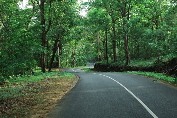 Kerala Tour Packages from Ahmedabad, Best Kerala Tour