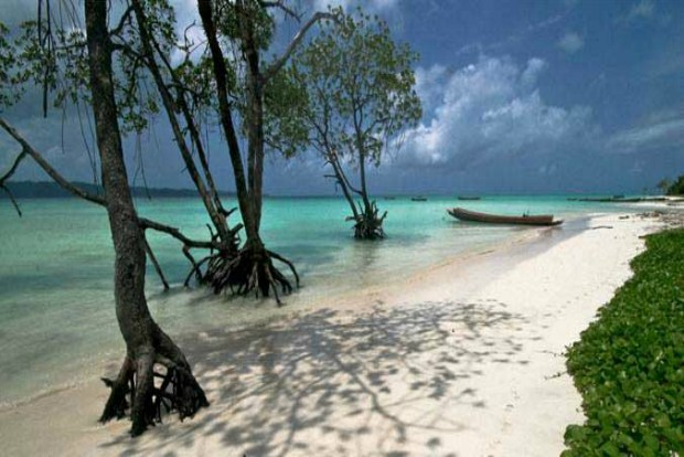 Image result for Top 4 Advantages of Getting a Local Travel Agent in Andaman