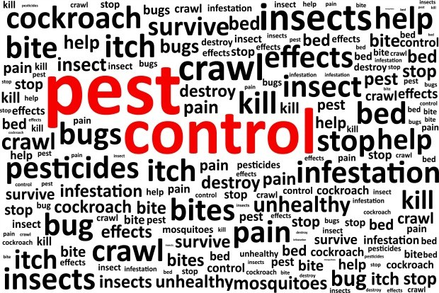 Top 10 Electric Mosquito Killer Machine Dealers In Mumbai For Sale